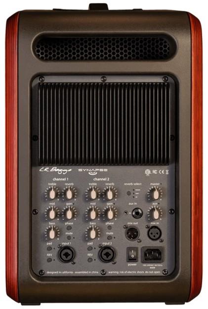 L R Baggs Amp Amp Pickups